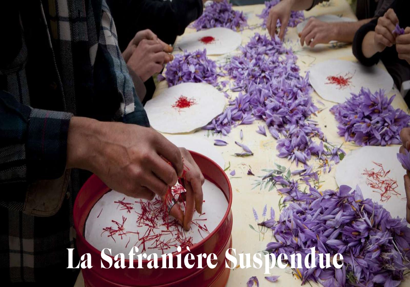 monoprix-la-safraniere-suspendue-paris